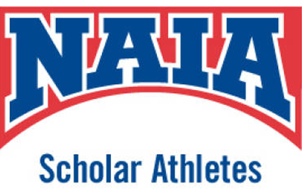 Photo for 9 Volleyball Student-Athletes Earn Scholar-Athlete Recognition