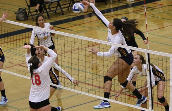 Photo for ERAU Chases All-Time Cal Pac Volleyball Win Mark